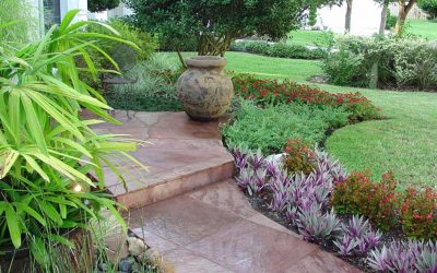 Tips for Creating a Tropical Landscape